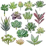 16 Pack Artificial Succulent...
