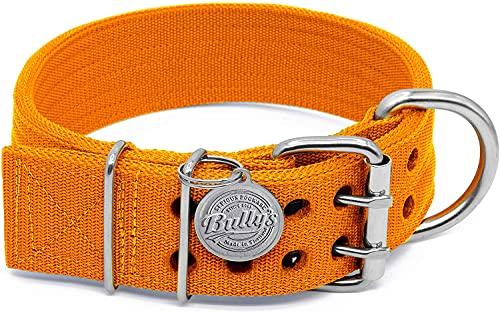 Pit Bull Collar, Dog Collar for Large Dogs, Heavy Duty Nylon, Stainless Steel Hardware (Large, Orange Juice)