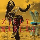 Songtexte von Ziggy Marley - Dragonfly