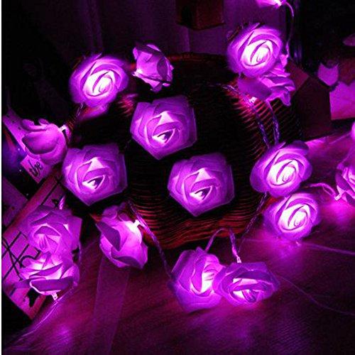 Morbuy Lichterketten, 20LED/30LED/40LED/50LED Rosen Blumen feenhafte String Lights für Hochzeit Festival Garden Party Weihnachtsdekoration Zubehör (2M/20LED, Lila)