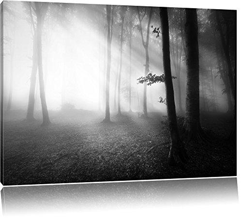 Pixxprint Düsterer Wald im Nebel als Leinwandbild/Größe: 60x40 / Wandbild/Kunstdruck/fertig bespannt
