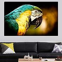 カラフルなオウムの動物 大人のためのダイヤモンドペインティングキット、アクセサリーツール付きの5Dクリスタルダイヤモンドアート、家の装飾ギフトのための写真DIYアートクラフト 40X50cm