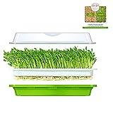Bighave - Bandeja para brotar semillas con tapa con kit de brotes extra pequeño