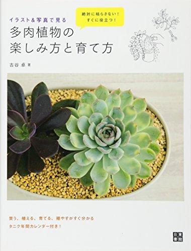 イラスト&写真で見る 多肉植物の楽しみ方と育て方
