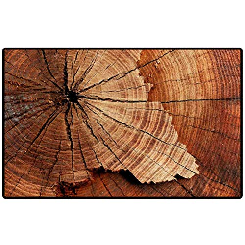 RenteriaDecor Door Mat Stump of Tree felled Section of The Trunk with Annual Rings 118590121 Floor Mats Doormat Rugs for Home