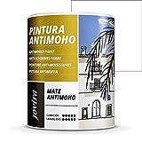PINTURA ANTIMOHO, evita el moho, resistente a la aparición de moho en paredes, aspecto mate. (750...