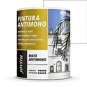 PINTURA ANTIMOHO, evita el moho, resistente a la aparición de moho en paredes, aspecto mate. (750 ML, BLANCO)