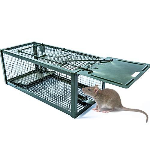 T-Raputa Trampa para Ratones,para capturar Ratones, Ratas, plagas y roedores en Interiores...