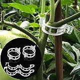 LEOBRO 150PCS Plant Support Garden Clips for Vine Vegetables, Tomato Trellis Clips, Make Garden Vegetable Grow Upright and Healthier, White