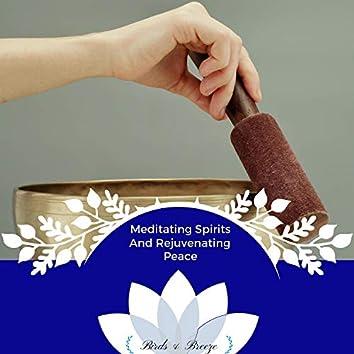 Meditating Spirits And Rejuvenating Peace