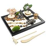 Japanese Zen Garden for Desk - Sakura Budah 9' x 7' Desktop Mini Zen Garden with White Sand Artificial Bonsai Tree Rocks Rakes & Accessories - Meditation Zen Gifts Sand Garden Kit for Office Zen Decor
