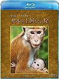 ディズニーネイチャー/サルの王国とその掟[Blu-ray/ブルーレイ]