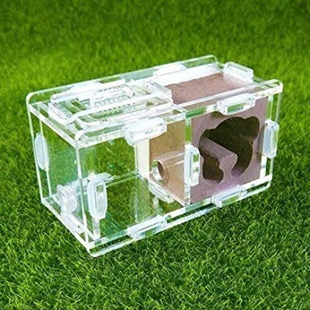 KDGPUM New Design Ant Nest DIY with Feeding Area Ant Farm Acrylic Plaster Villa Pet Mania for House Ants Insect Ant Workshop : 08