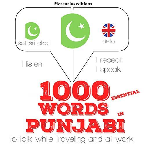 1000 essential words in Punjabi audiobook cover art