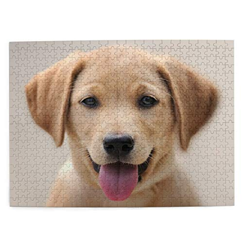 Opehodecor Jigsaw Puzzles for Adults 500 Piece Times Square Intelligence Decompression Fun Game,Yellow Labrador Puppy Portrait,The Completed Puzzle Size 20.5'x15.1'