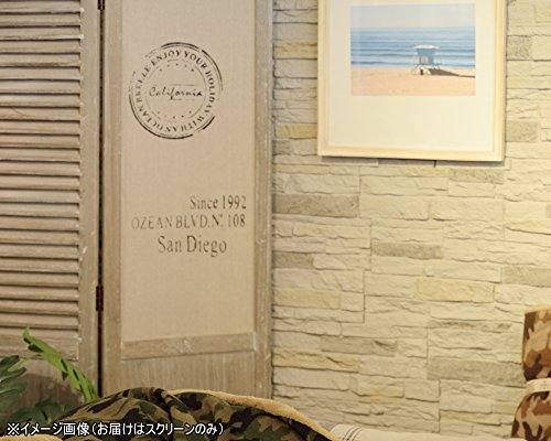 AZUMAYAサンマルコス黒板スクリーンTSS-654