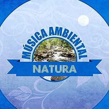 Música Ambiental Natura
