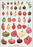 WOOOOL Verschiedene Tomater Sorten Retro Vintage Wand