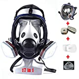 17in1 Full Face Respirator Widely Used in Organic Gas, Anti-Dust, Paint Sprayer, Chemical, Woodworking