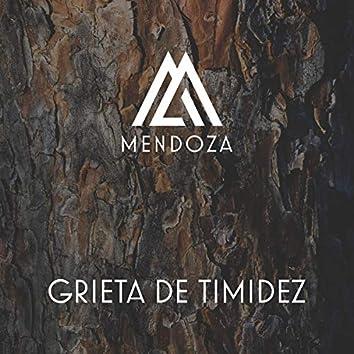 Grieta de Timidez