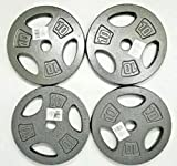 ZoeDul X4 10 LB Cap 1' Hole Iron Grip Weight Plates Pair Set of Four -40 Pounds Total