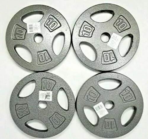 "ZoeDul X4 10 LB Cap 1"" Hole Iron Grip Weight Plates Pair Set of Four -40 Pounds Total"