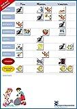 Smagnon Magnetischer DIN-A3 Familienplaner | Familienkalender |Belohnungssystem | Wochenplaner