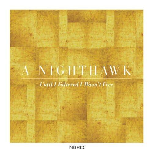 A Nighthawk