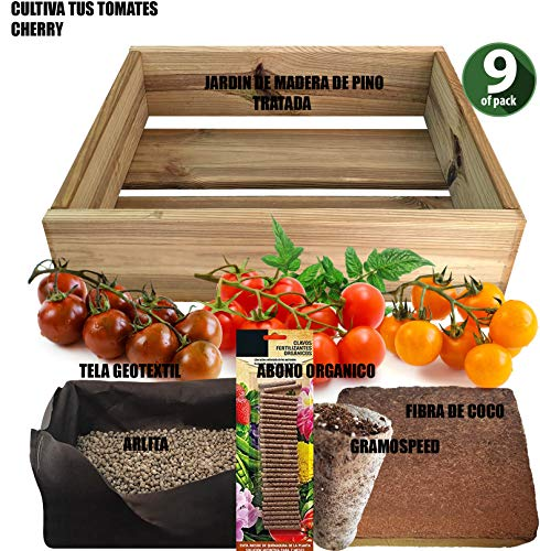 No Plan B for Earth Kit de Cultivo con Maceta de Pino Tratada. Semillas de Tomates Cherry, Red Cherry, Yellow Cherry, Black Cherry