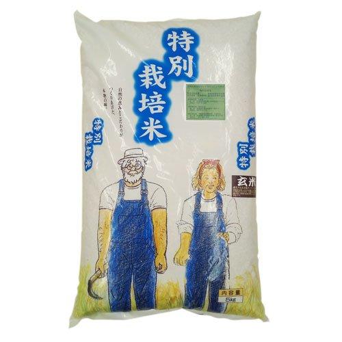 北海道産 無農薬・無化学肥料ゆめぴりか白米4、5kg