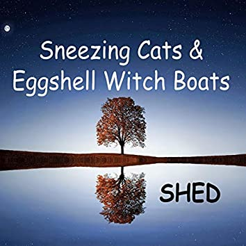 Sneezing Cats and Eggshell Witch Boats