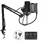 Micrófono de karaoke de condensador profesional para computadora/teléfono Estudio 3.5mm Grabación Podcast Microfone one size style6