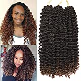 16 Inch Afro Kinky Curly Braiding Hair Pre Looped 6 Packs Ripple Deep Twist Crochet Braids Beach Curl Crochet Synthetic Hair Ombre Beach Twist Crochet Hair for Women 22 Strands/Pack