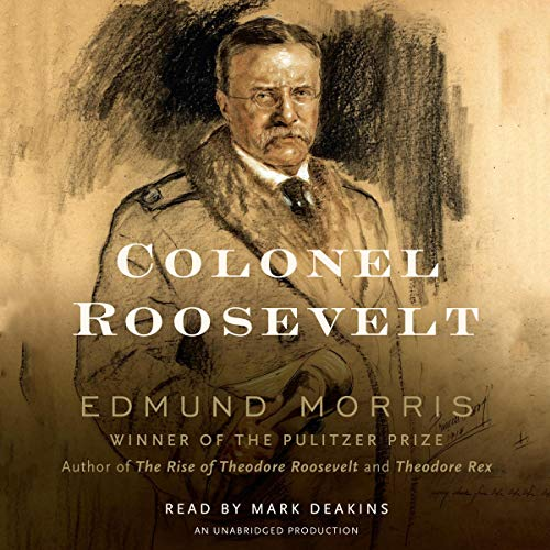 Colonel Roosevelt  By  cover art