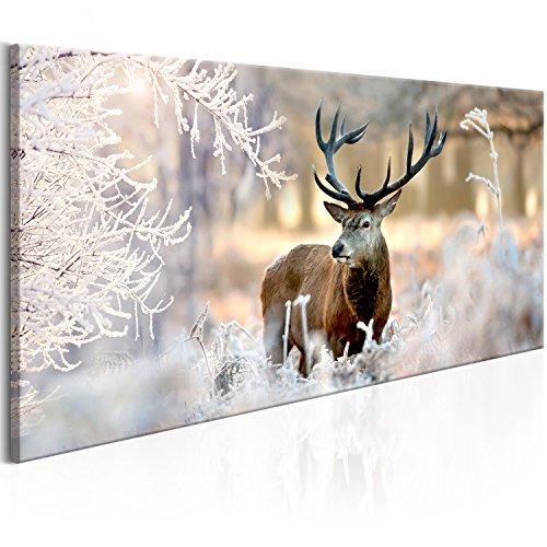 murando Quadro Cervo 80x40 cm 1 Pezzo Stampa su Tela in TNT XXL Immagini Moderni Murale Fotografia Grafica Decorazione da Parete 5 Pezzi Paesaggio Natura Inverno g-C-0065-b-b