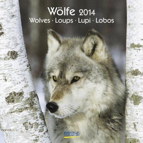 Wölfe 2014. Broschürenkalender