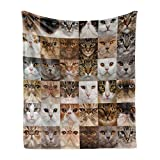 Lunarable Cat Lover Soft Flannel Fleece Throw Blanket, Collage of Cat Heads Breed British Chartreux Turkish Angora Shorthair, Cozy Plush for Indoor and Outdoor Use, 70' x 90', Brown White