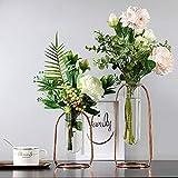 Tongxu - Set di 2 vasi in vetro a forma di tubo, vaso decorativo moderno, idroponico, con cornice in metallo, oro rosa, 2 misure, per decorazione della casa o del bagno, regalo ideale.