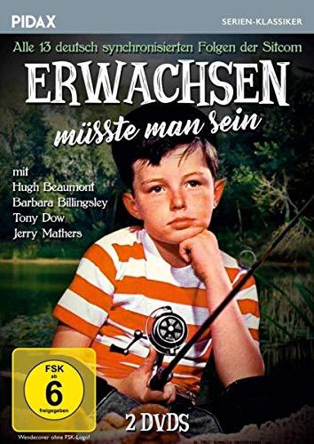 Alle deutsch synchronisierten Folgen (2 DVDs)