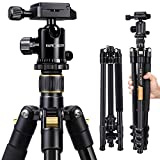 K&F Concept 62'' DSLR Tripod, Lightweight and Compact Aluminum Camera Tripod with 360 Panorama Ball Head Quick Release Plate for Travel and Work (TM2324 Black)
