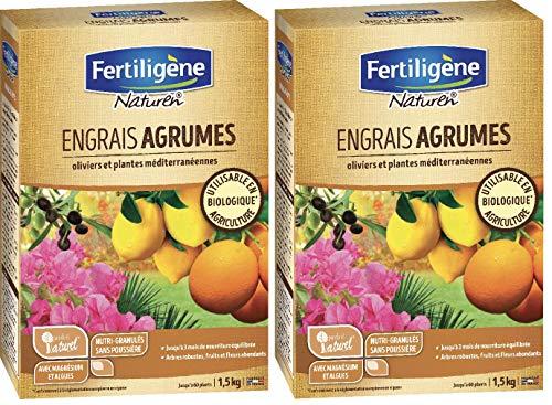 Maisange FERTILIGENE NATUREN - Engrais Agrumes ET Plantes MEDITERRANEENNES - Arbres Robustes, Fruits et Fleurs abondants- NATAGR15