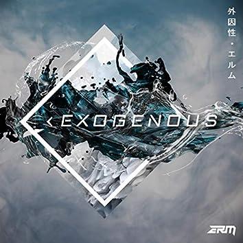 Exogenous (ERM)