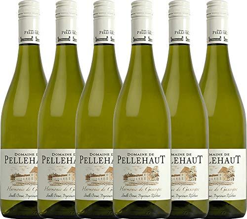 VINELLO 6er Weinpaket Weißwein - Harmonie de Gascogne Blanc 2019 - Domaine de Pellehaut mit Weinausgießer | veganer Weißwein | französischer Sommerwein aus Sud Ouest | 6 x 0,75 Liter