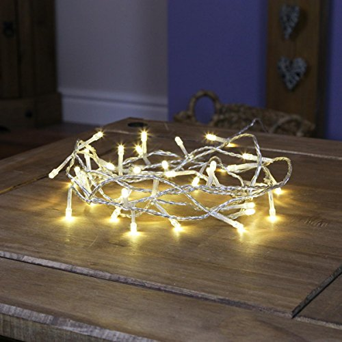Festive Lights Indoor Fairy Lights - 40 Warm White LEDs - Clear Cable