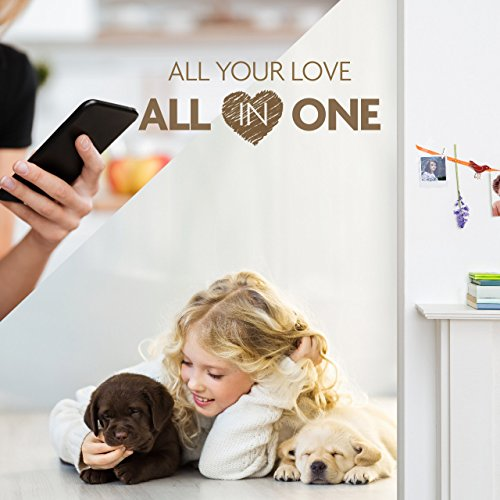 Faleemi Wireless Security Camera, WiFi Home Indoor Dog Pet Camera, Baby Monitor, Nanny Cam, 1080P HD Pan/Tilt/Zoom IP Camera, with 2 Way Audio, Night Vision, Cell Phone App Remote View Control