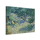 PICANOVA – Vincent Van Gogh Olive Orchard 100x75cm – Cuadro sobre Lienzo – Impresión En Lienzo Montado sobre Marco De Madera (2cm) – Disponible En Varios Tamaños