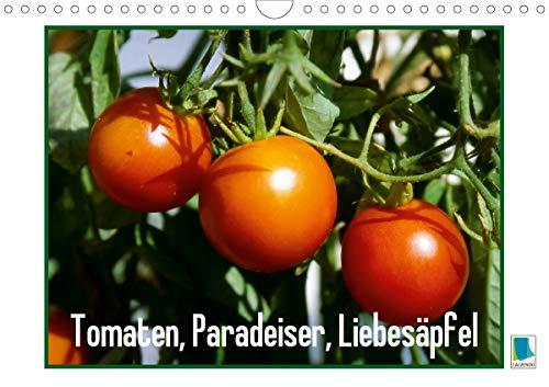 Tomaten, Paradeiser, Liebesäpfel (Wandkalender 2021 DIN A4 quer)