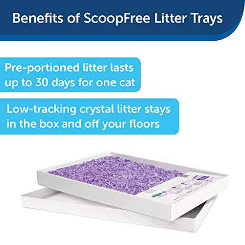 PetSafe ScoopFree Self-Cleaning Cat Litter Box Tray Refills with Lavender Non-Clumping Crystals - Pack of 3