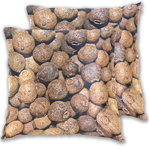 SAIAOS 2er Set Dekorative Kissenbezug,Küche Piment Pflanze Getreide Koch Piment Aromatische Officinalis Schließen Dekorative Sitzkissenbezug Couchkissenbezug 55x55cm