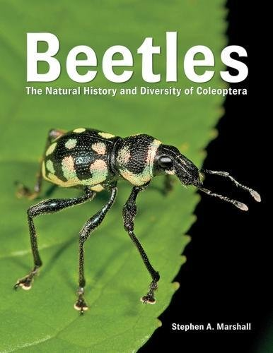Marshall, S: Beetles: The Natural History and Diversity of Coleoptera